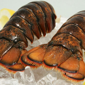 6 Raw Lobster Tails with 6 oz. Compound Butter