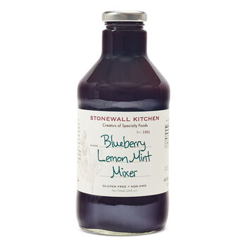 Blueberry Lemon Mint Drink Mixer