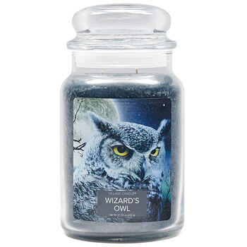 Wizard's Owl Candle